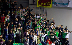 Green Dragons, fans of Olimpija during ice-hockey match between HDD Tilia Olimpija Ljubljana (SLO) and EC Red Bull Salzburg (AUT) in 2nd Quaterfinals of EBEL league, on March 1, 2011 in Hala Tivoli, Ljubljana, Slovenia. (Photo By Vid Ponikvar / Sportida.com)