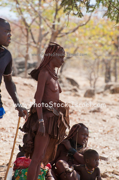 Himba family, Himba woman wearing headgear and decorations. The Himba are a pastoral and nomadic people of northern Namibia. They tend herds of goats and cattle in the arid desert environment, living in extended families in homesteads. Both men and women go topless. Photographed in Kaokoland, Namibia, Southern Africa.