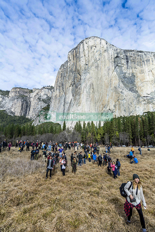 January 10, 2016 - California, United States of America - A large group of people and photographers joining at Yosemite Park with El Capitan and the trees behind, California, USA. (Credit Image: © Roberto Lopez/VW Pics via ZUMA Wire)