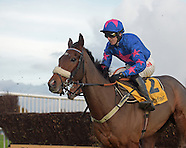 Betfair Chase Day 191116