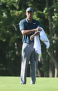 ST. LOUIS, MO - AUGUST 09: Tiger Woods wipes off perspiration before putting on the #10 green during the first round of the PGA Championship on August 09, 2018, at Bellerive Country Club, St. Louis, MO.  (Photo by Keith Gillett/Icon Sportswire)