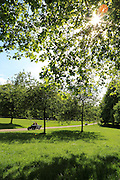 An early summer's day in London's Green Park