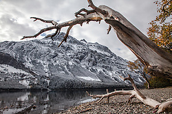 Autumn snow, Lake McDonald, Glacier National Park