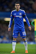Pedro of Chelsea looking on. Barclays Premier league match, Chelsea v Norwich city at Stamford Bridge in London on Saturday 21st November 2015.<br /> pic by John Patrick Fletcher, Andrew Orchard sports photography.