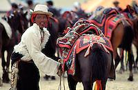 Inde, Province du Jammu Cachemire,  Ladakh, Plateau du Changtang, Nomade Chang-Pa en fête // India, Province of Jammu Cachemire, Ladakh, Changtang, Nomads Chang-Pa festival
