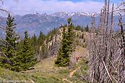 Tronsen Ridge runs through the Cascades in western Washington.