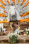A young child sits under a giant offering at a gravesite of a family member decorated for the Day of the Dead festival October 31, 2017 in Tzintzuntzan, Michoacan, Mexico.