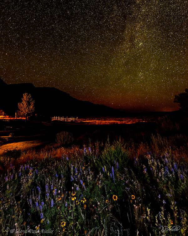 The Milky Way rises above a field of wildflowers lit by the warm light of a nearby cabin at Kestrel Ranch, Cody, Wyoming. <br /> <br /> (exposure stack of 2 images)