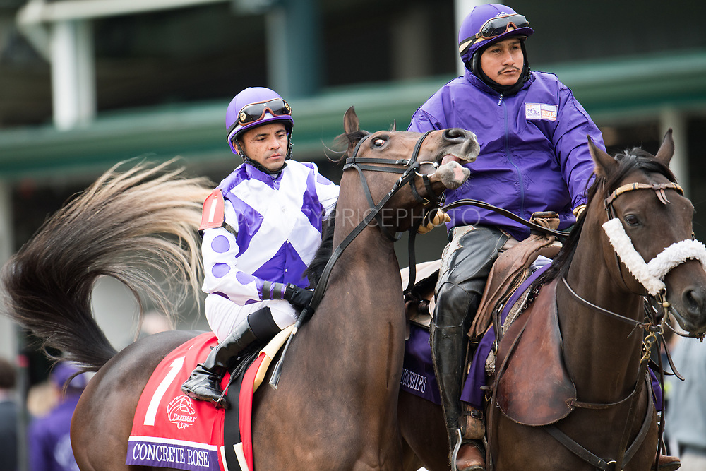 November 1-3, 2018: Breeders' Cup Horse Racing World Championships. Concrete Rose and Jose Lezcano head to the post in the Juvenile Fillies Turf G1
