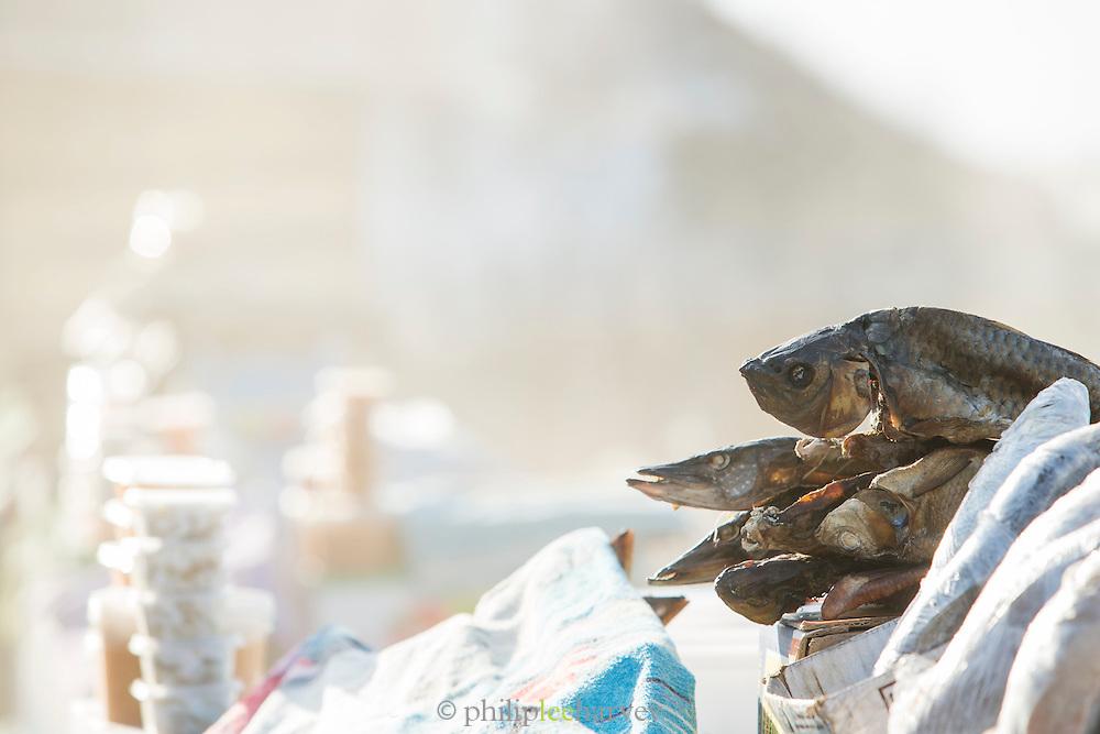 Omul fish at market, Port Baykal, Near Lake Baikal, Siberia, Russia