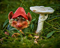 Troll with a Mushroom. Image taken with a Fuji X-T1 camera and 100-400 mm OIS lens