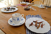 """Tea and locusts at Shoichi and Chisato Uchiyama's home in Tokyo..Tokyo resident Shoichi Uchiyama is the author of """"Fun Insect Cooking"""". His blog on the topic gets 400 hits a day. He believes insects could one day be the solution to food shortages, and that rearing bugs at home could dispel food safety worries."""