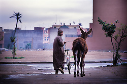 A man wearing a traditional djellaba collects his mule after it received treatment at the SPANA animal refuge, Marrakech, Morocco.