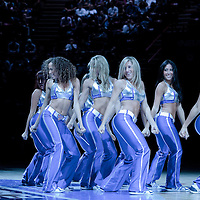 06 October 2010: The New York Knicks City Dancers perform during the Minnesota Timberwolves 106-100 victory over the New York Knicks, during 2010 NBA Europe Live, at the POPB Arena in Paris, France.