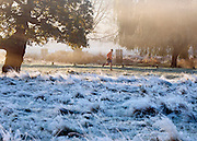 © Licensed to London News Pictures. 06/11/2014. Richmond, UK. A man jogs past a frosty field.  People and animals during a frosty start to the day on 6th November 2014. Temperature fell across the country overnight. Photo credit : Stephen Simpson/LNP
