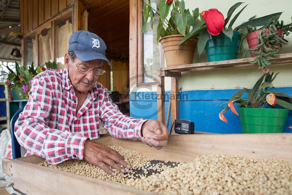 Salento, Quindío, Colombia - 05.09.2016        <br /> <br /> A coffee farmer sorting coffee beans, to get a higher product standart. Impression of the Colombian coffee region. One of numerous coffee plantation near the village Salento, in the central range of the Colombian Andes Mountains.<br /> <br /> Ein Kaffeebauer sortiert Kaffeebohnen um hochwertigen Kaffee zu erhalten. Eindruecke aus der kolumbianische Kaffeeanbauregion. Eine von zahlreichen Kaffeeplantage nahe des Dorfs Salento, in der Zentralkordillere der kolumbianischen Anden.<br /> <br /> Photo: Bjoern Kietzmann