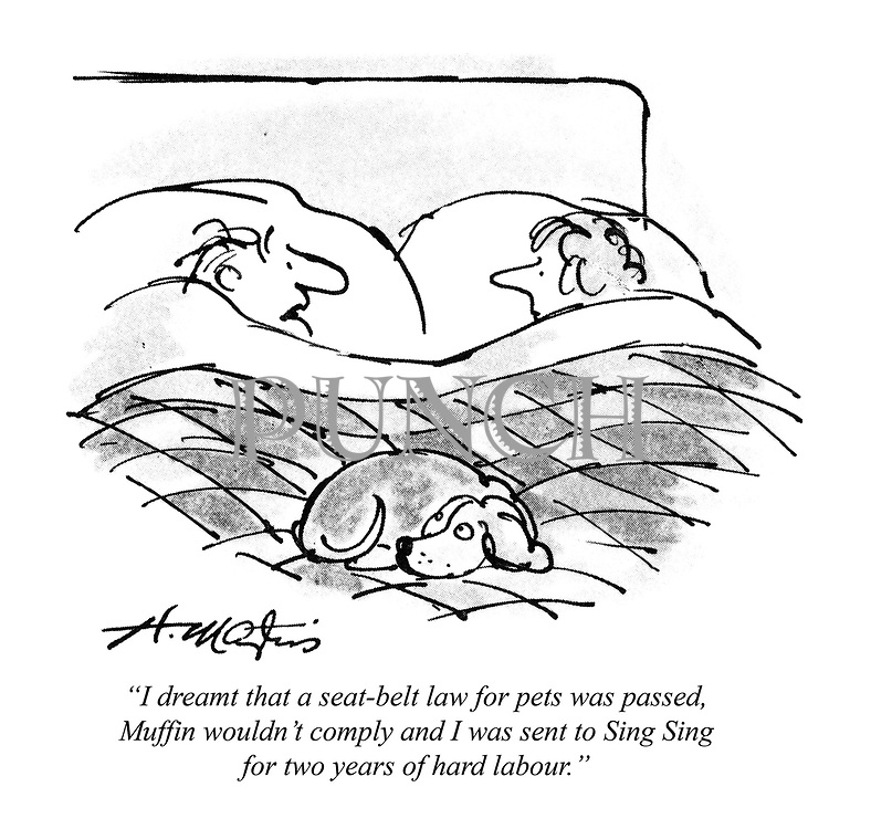 """""""I dreamt that a seat-belt law for pets was passed, Muffin wouldn't comply and I was sent to Sing Sing for two years of hard labour."""""""