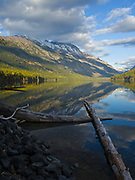 Driftwood logs in Kintla Lake with glassy water reflection of the Boundary Mountains including Long Knife Peak, Glacier National Park, Montana.