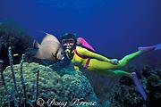 diver and gray angelfish, <br /> Pomacanthus arcuatus, Greenbush Cay Reef, <br /> Berry Islands, Bahamas ( Western Atlantic Ocean ) <br /> MR 115