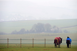 © Licensed to London News Pictures. 01/03/2019. Eynsford,Mist still hanging over fields in Eynsford at late morning, A dull grey day today in Kent as the recent sunny weather is replace with cloud and mist.Photo credit: Grant Falvey/LNP