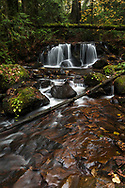 A smaller waterfall along Poignant Creek on the slopes of Sumas Mountain in Abbotsford, British Columbia, Canada