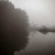 Morning mist at Canoe Meadows, Pittsfield, MA
