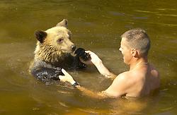 bjørnebad