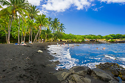 Punaluu Black Sand Beach, coconut grove, green sea turtle, Chelonia mydas, basking on the beach and people playing, Big Island, Hawaii, USA, Pacific Ocean