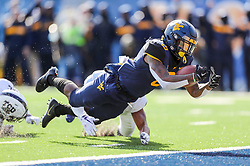 Nov 10, 2018; Morgantown, WV, USA; West Virginia Mountaineers running back Kennedy McKoy (6) runs for a touchdown during the second quarter against the TCU Horned Frogs at Mountaineer Field at Milan Puskar Stadium. Mandatory Credit: Ben Queen-USA TODAY Sports