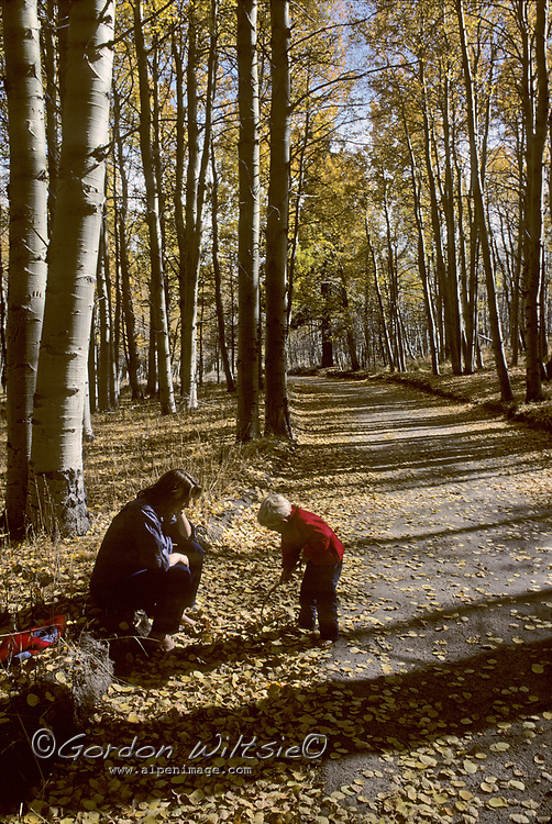 A mother and her son play beside a road through a fall-colored aspen grove near Lee Vining in California's Sierra Nevada.