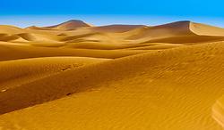 The erg at Chegaga, southern Morocco<br /> <br /> (c) Andrew Wilson   Edinburgh Elite media