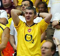 Photo: Chris Ratcliffe.<br /> Arsenal v Barcelona. UEFA Champions League Final. 17/05/2006.<br /> Dejected Arsenal fan.