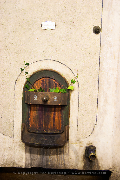 Domaine Terres Georges. In Castelnau d'Aude. Minervois. Languedoc. Concrete fermentation and storage vats. France. Europe.