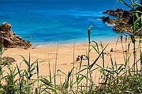 France, Vendée (85), Ile d'Yeu, plage des Soux // France, Vendée, Yeu island, Soux beach