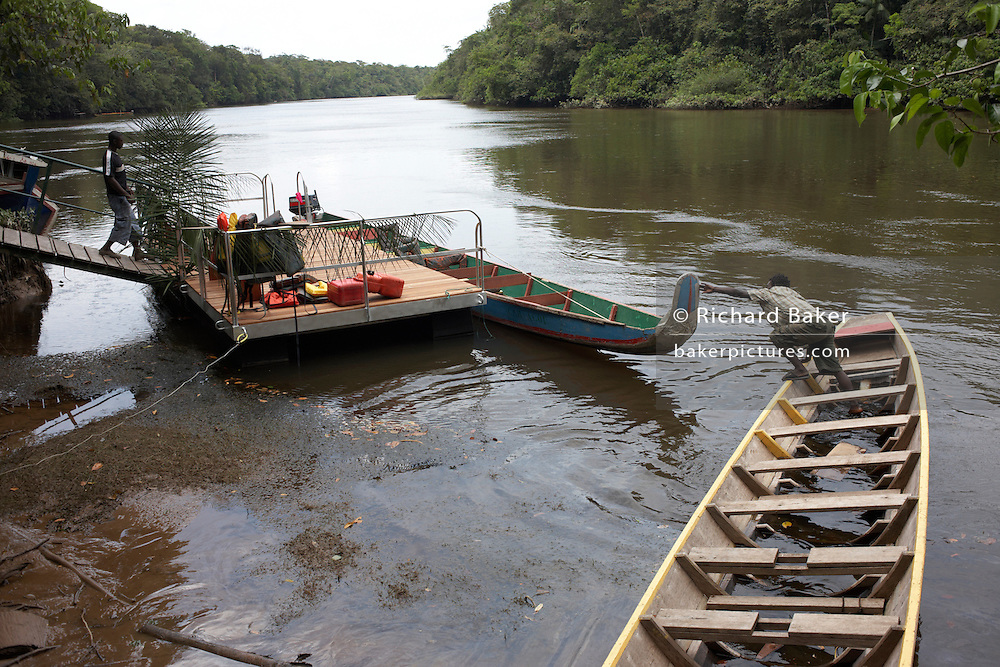 Tourist boatman reaches to grab a drifting longboat on the Kourou River in French Guiana.