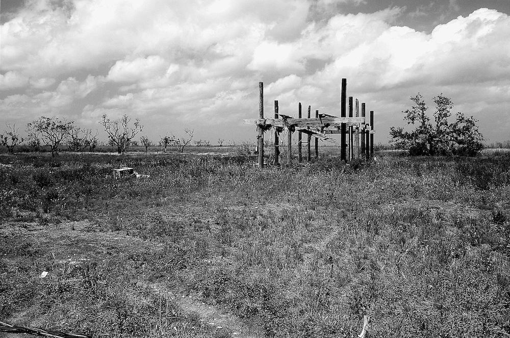 Ruins of Camp