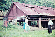 Two British women visiting cocoa drying shed with Mr Khan the farm manager, rural Trinidad c 1962