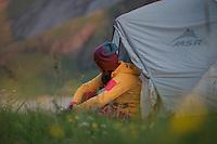 Female hiker sits outside tent surrounded by summer wild flowers, Horseid beach, Moskenesøy, Lofoten Islands, Norway