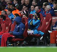 Arsenal's Mikel Arteta looks on dejected after going off injured<br /> <br /> - Champions League Group D - Arsenal vs Anderlecht- Emirates Stadium - London - England - 4th November 2014  - Picture David Klein/Sportimage