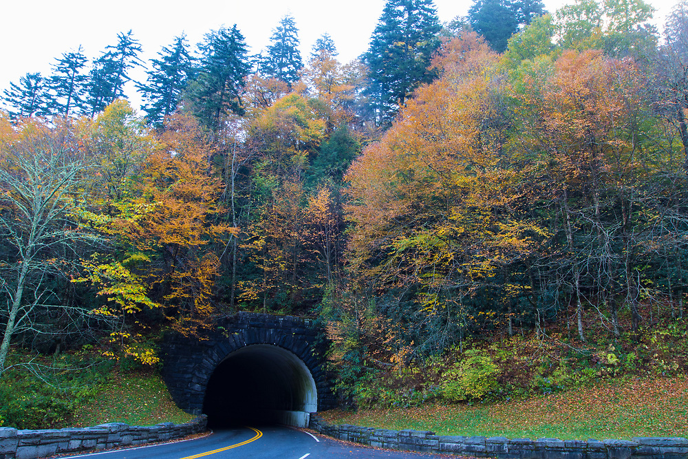 October 11, 2017: The fall colors on display at Morton Tunnel.