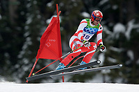 VANCOUVER OLYMPIC GAMES 2010 - VANCOUVER (CAN) - 15/02/2010 - PHOTO : FRANCK FAUGERE / DPPI<br /> ALPINE SKIING / DOWNHILL MEN - DIDIER DEFAGO (SUI) / GOLD MEDAL