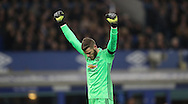 David De Gea of Manchester United celebrates as Zlatan Ibrahimovic of Manchester United scores during the Premier League match at Goodison Park, Liverpool. Picture date: December 4th, 2016.Photo credit should read: Lynne Cameron/Sportimage