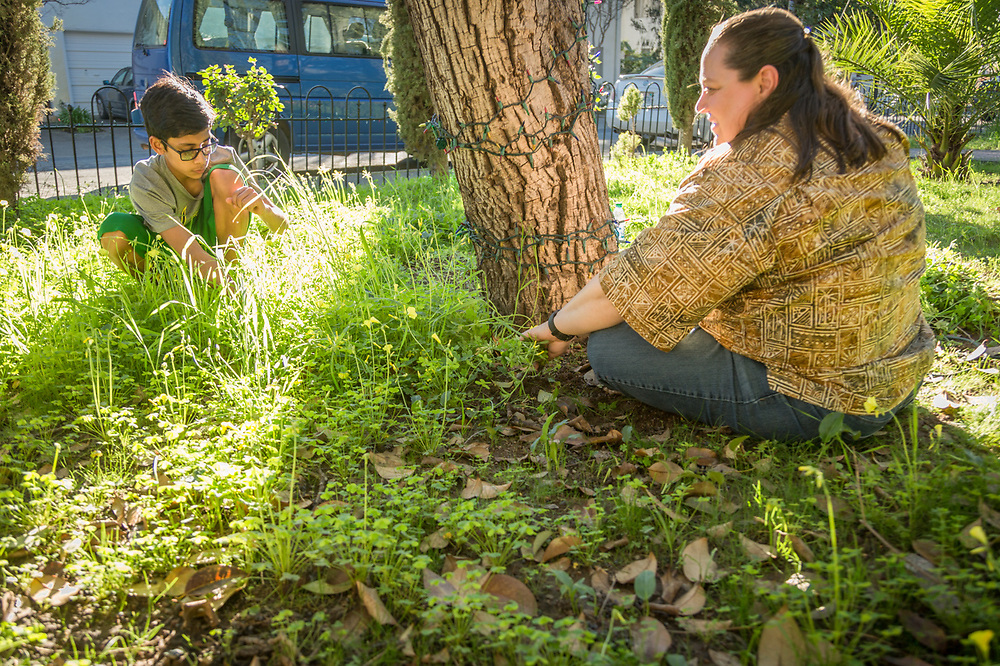 """""""My son agreed to give me a half hour of his time to pull weeds with the hope of encouraging the grass to grow so we can have a front lawn.  Despite our efforts,  it appears the weeds are winning.""""  -Calistoga School System music teacher Nina Pedersen with her thirteen year old son, Christian"""