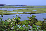 View from Fort Hill trail, Cape Cod National Seashore, Massachusetts, USA