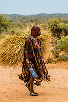 Woman carrying hay to the weekly Hamer tribe market, Turmi, Omo Valley, Ethiopia.