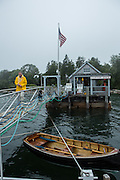 Northeast Harbor, ME - 13 August 2014. Thornton A sh coming down Clifton Dock, near the entrance to Northeast Harbor, in the fog.