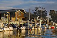 Boats along the Embarcadero Waterfront, Morro Bay, California