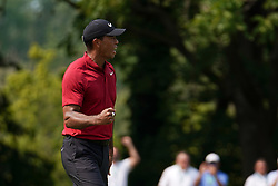 August 12, 2018 - St. Louis, Missouri, United States - Tiger Woods reacts after birdieing the 9th green during the final round of the 100th PGA Championship at Bellerive Country Club. (Credit Image: © Debby Wong via ZUMA Wire)