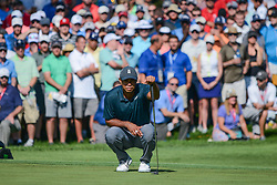 August 9, 2018 - Town And Country, Missouri, U.S - WOODS, TIGER] from Jupiter Florida, USA lines up his putt on hole number 14 during round one of the 100th PGA Championship on Thursday, August 8, 2018, held at Bellerive Country Club in Town and Country, MO (Photo credit Richard Ulreich / ZUMA Press) (Credit Image: © Richard Ulreich via ZUMA Wire)
