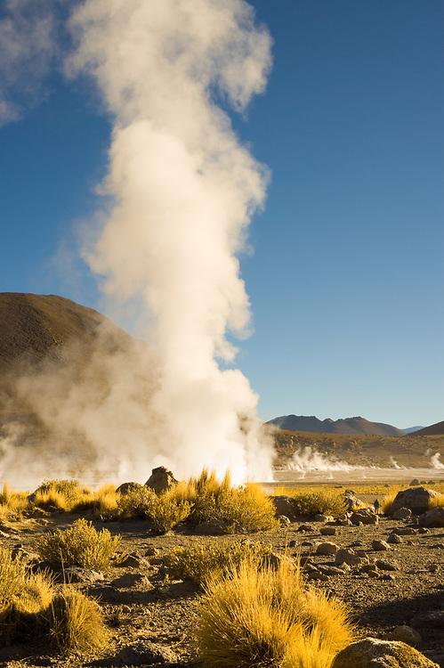 Fumaroles at El Tatio Geysers at an altitude of 4300m, Atacama desert, Antofagasta Region, Chile, South America
